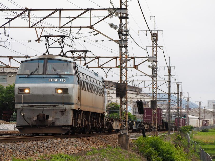 EF66 115 20160530