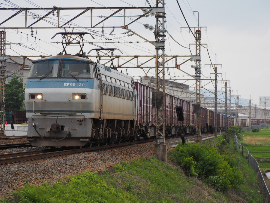 EF66 120 20160615