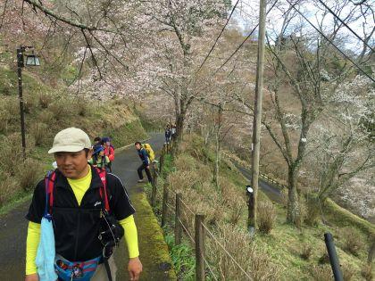 20150402吉野山01