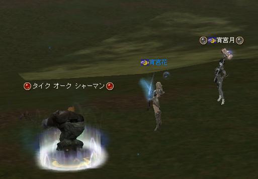 160528-2猫¥消化1