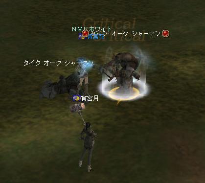 160609-2猫¥消化4