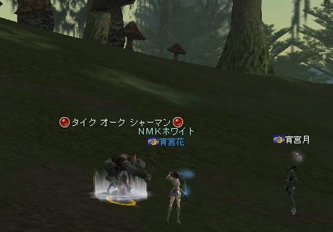 160609-2猫¥消化1
