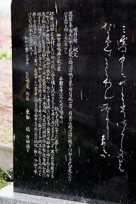 0027_kodama_misato_01_DSC_3171.jpg