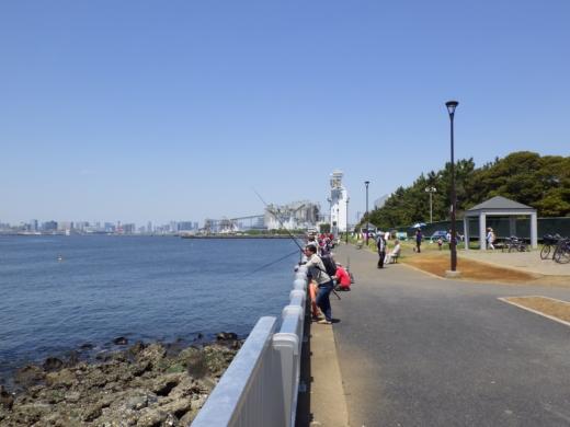 若洲海浜公園2 (8)