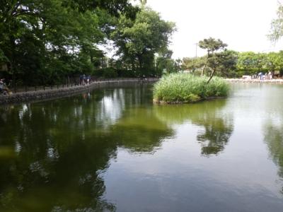 赤塚公園 (5)