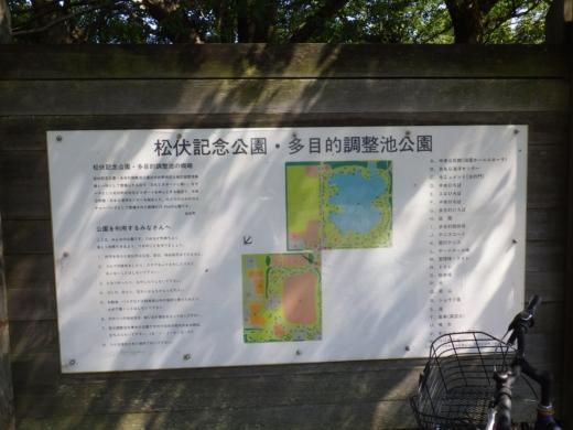 松伏総合公園 (7)