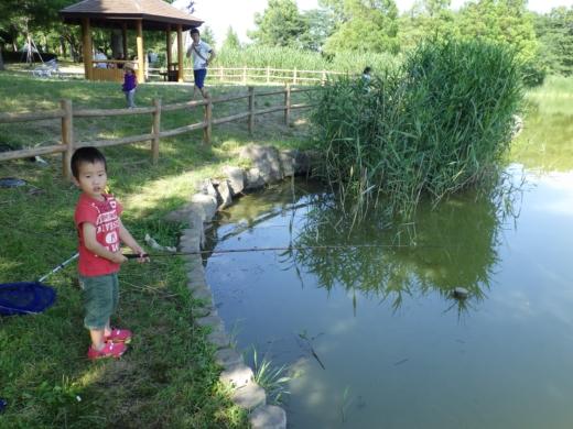 松伏の池 (16)