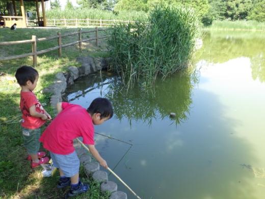 松伏の池 (9)