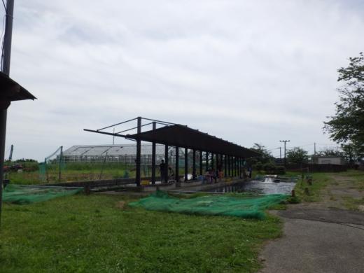 手賀沼フィッシングセンター (7)