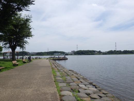 手賀沼公園 (5)