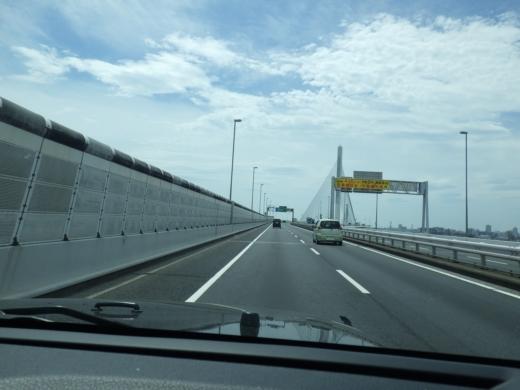 江戸川放水路ハゼ釣り (5)
