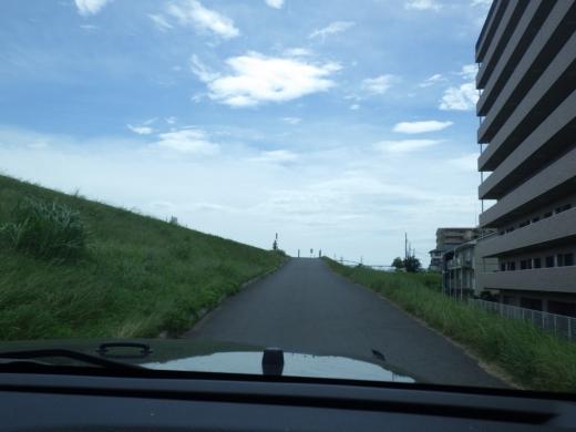 江戸川放水路ハゼ釣り (7)