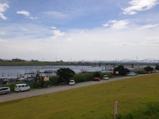 江戸川放水路ハゼ釣り (8)