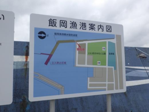 飯岡漁港釣り (12)