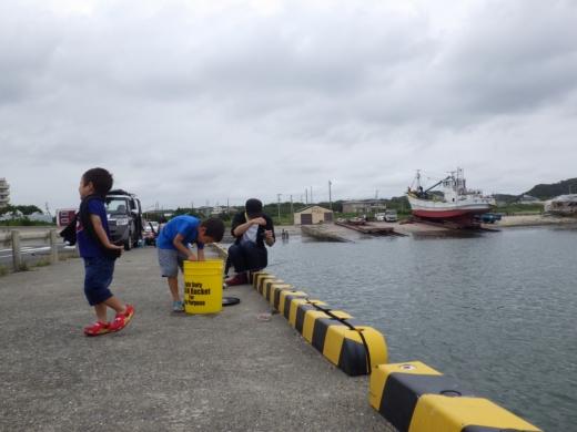 飯岡漁港釣り (26)