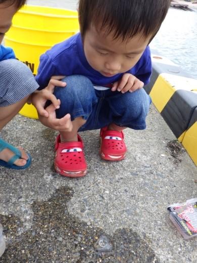 飯岡漁港釣り (29)