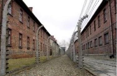 ナチス鉄条網1