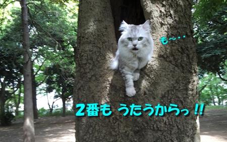 お散歩後編3