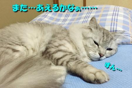 玉三郎の初恋7