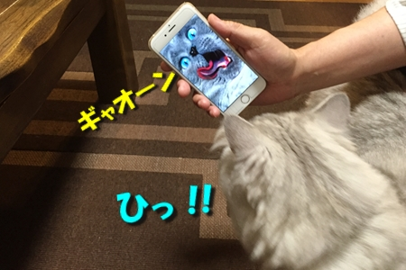 人猫語翻訳機9