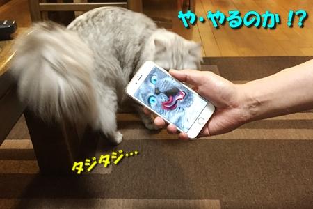 人猫語翻訳機10
