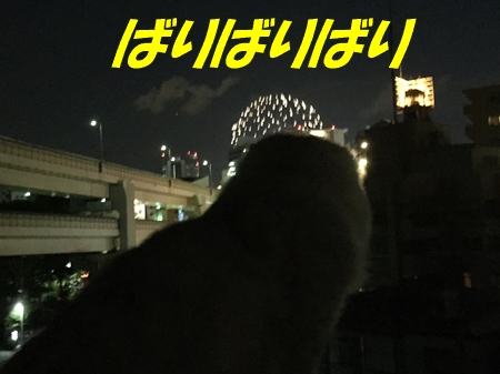 開港記念日7