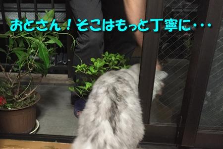 現場監督3