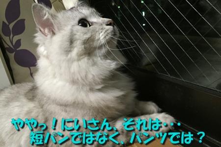 現場監督5