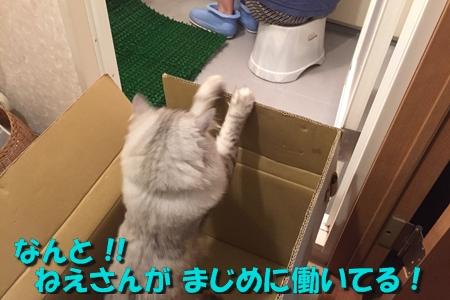 現場監督7