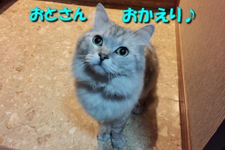 一日千秋7