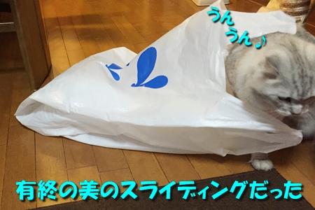 買い物袋リベンジ6