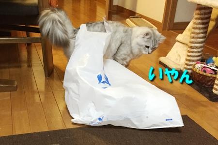買い物袋リベンジ8