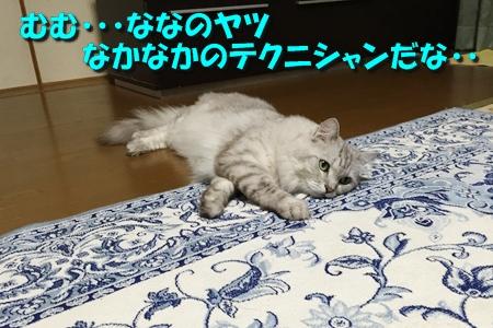 ななちゃん日記9