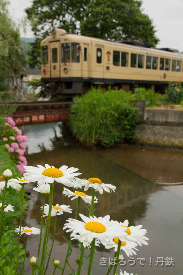 きばろうで!丹鉄 〜京都丹後鉄道を応援する写真ブログ