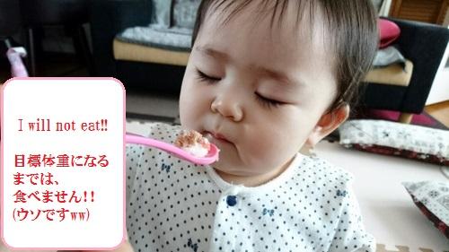 2016-4-14 食べません! (500x281)