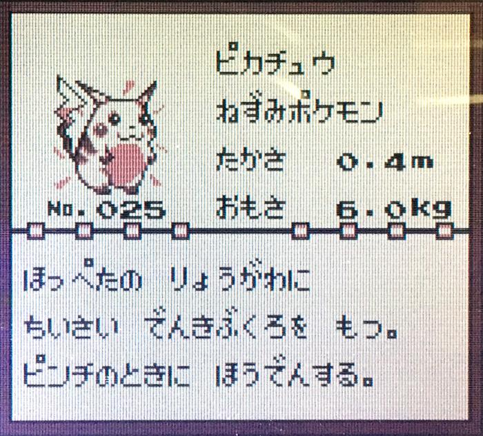 IMG_1994のコピー