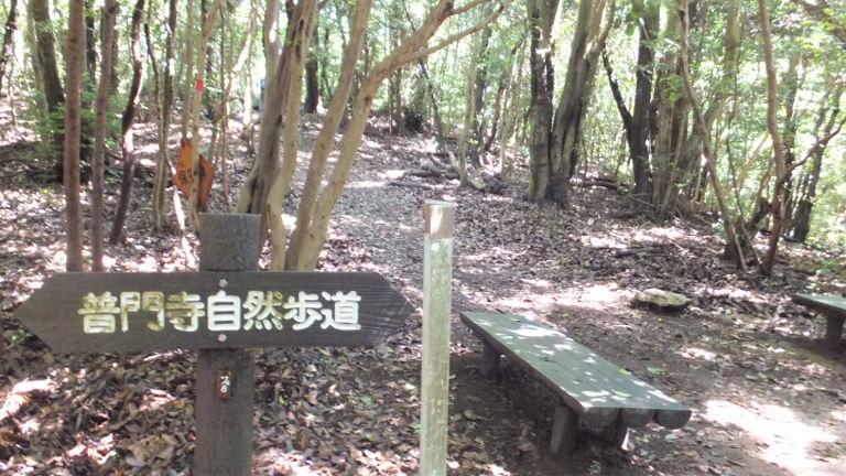普門寺自然歩道
