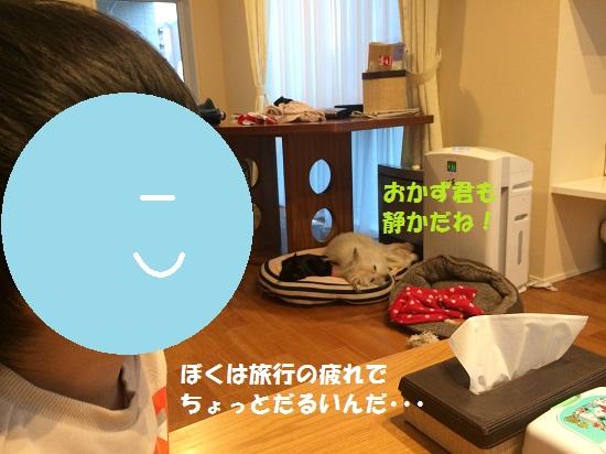 2016年5月39日③