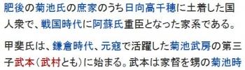 wiki甲斐氏