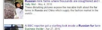 tokFur Russia