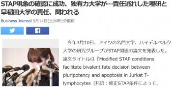 newsSTAP現象の確認に成功、独有力大学が…責任逃れした理研と早稲田大学の責任、問われる