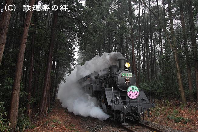 20120317寺内5D2