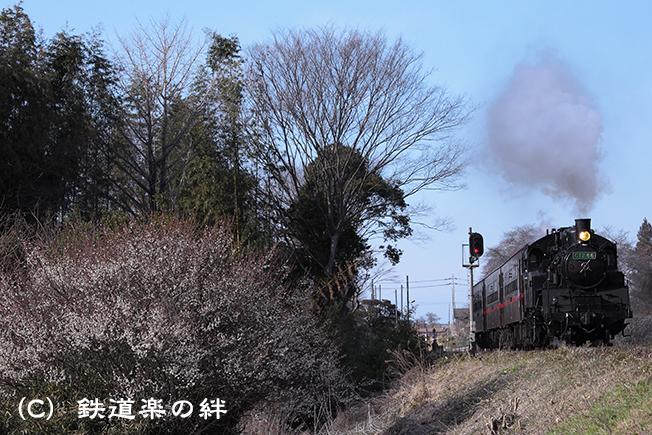 20120325久下田5D2