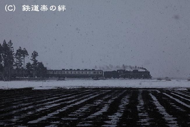 20120407野沢035D2