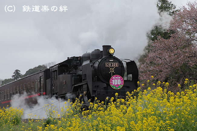 20120421久下田025D2