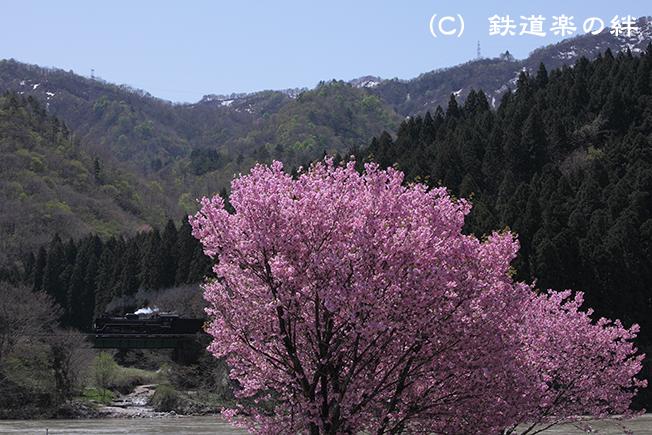 20120428咲花5D2