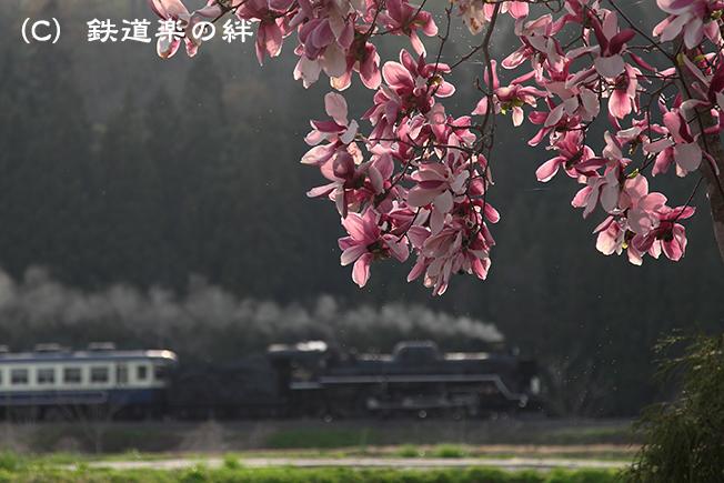20120429上野尻025D2