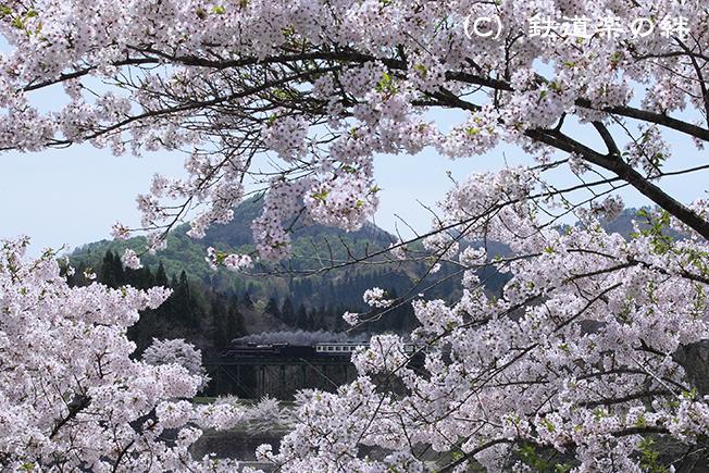 20120429上野尻015D2