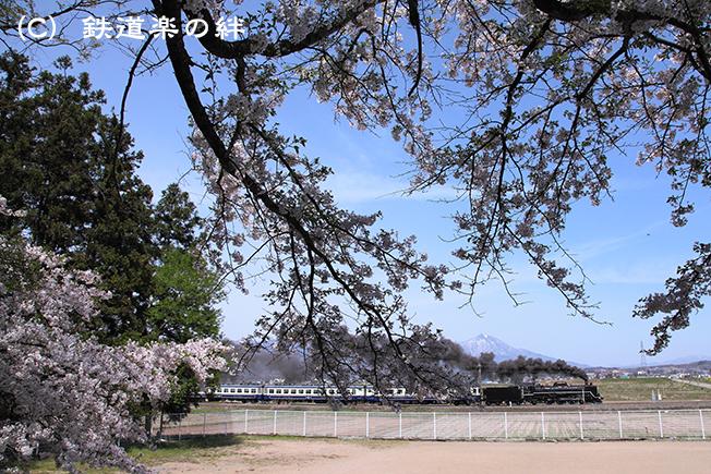 20120429堂島5D2