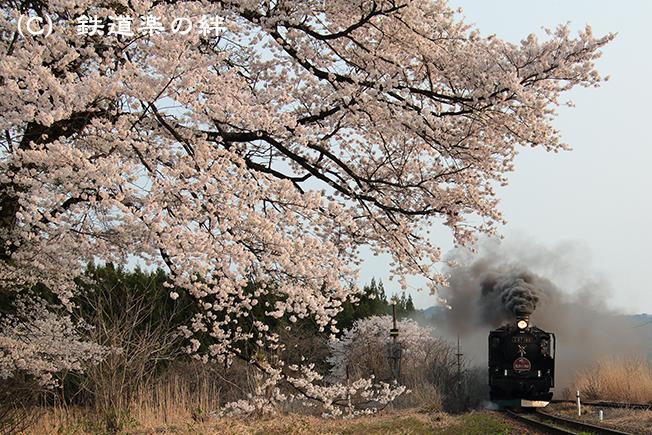 20160416上野尻03